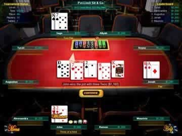 Play a Variety of Hold 'Em games for Hours in the Poker Staple Texas Hold 'Em