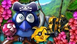 Bird Pirates