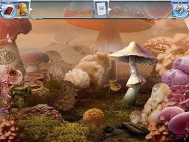 Mushroom Age